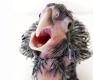 Kakadu po vylíhnutí