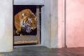 Nový samec tygra malajského Johann dorazil do Prahy v noci ze středy na čtvrtek.