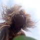 Kateřina Hrachovcová - Herčíkové: Něžné selfie u rybníka