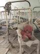 Černobyl 2015