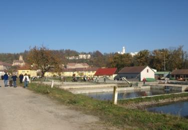 Sádky Hluboká v roce 2008