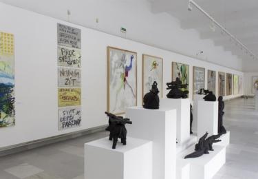 Knížákova výstava v karlovarské Galerii umění