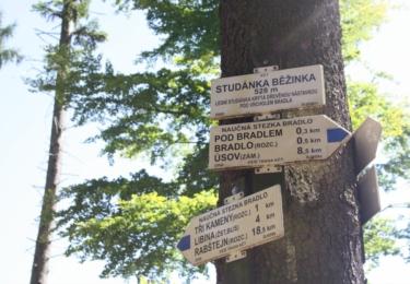 U studánky Běžinka jde tábořit i rozdělávat oheň