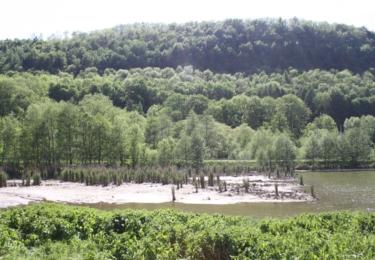 Krajina u Perné