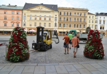 Zahradníci Výstaviště Flora Olomouc umisťují květinové pyramidy