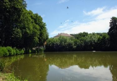 Smolotelský rybník