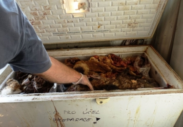 """""""V některých místech zátahu byl tak silný zápach zkaženého masa, že se tam nedalo vydržet,"""
