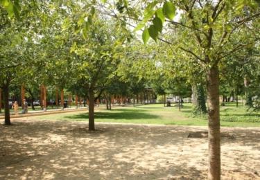 Park na lázeňské kolonádě