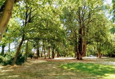 Prčický zámecký park