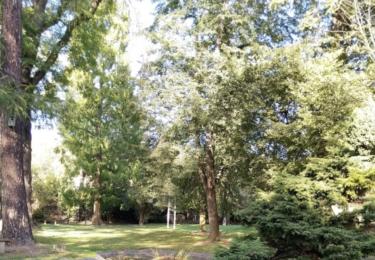 Zámecká zahrada