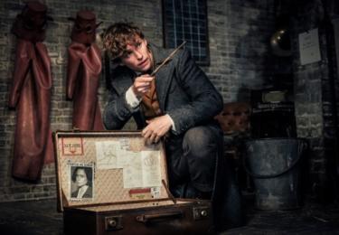 Mlok se svým pověstným kufříkem. Fantastická zvířata: Grindelwaldovy zločiny. Foto Warner Bros. Pictures