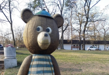 Medvědi z Kolína