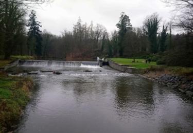 Doubrava v zámeckém parku