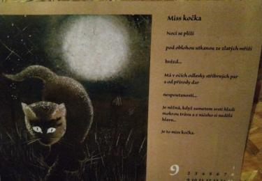 Z kočičího kalendáře
