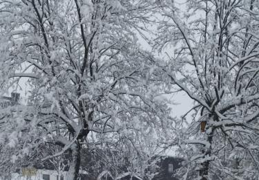 Letošní zima v Božím Daru, foto Facebook