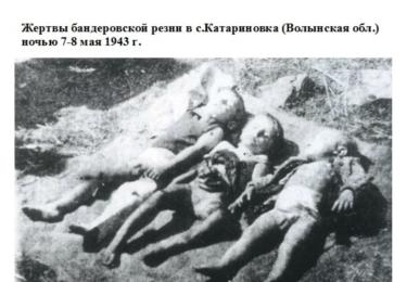 Boj za svobodu v podání Banderovců / polské a ruské archivy