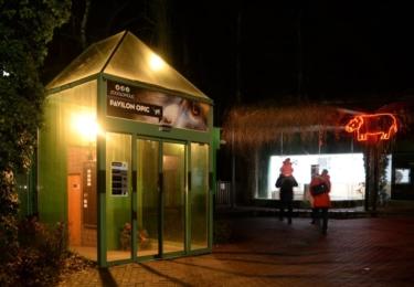 Noční prohlídka v Zoo Olomouc, foto Facebook