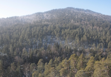 Výhled z Čertovy skály