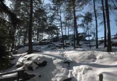 Nádherná příroda na Šumavě