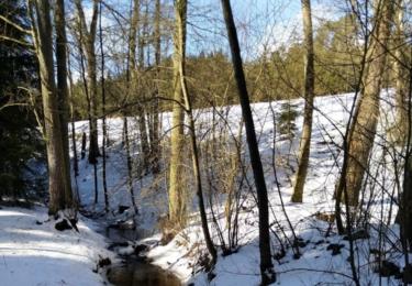 Janovický potok