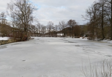 Osada Ledce s rybníkem a hospodářským stavením