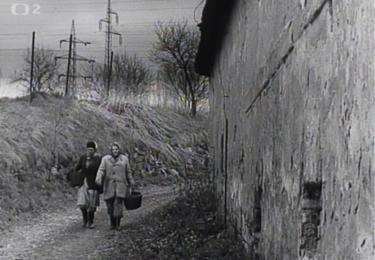 Filmová cesta z pole, foto repro z filmu
