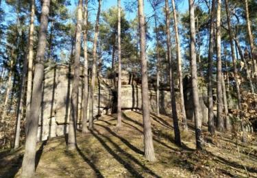Lesy plné skalních útvarů