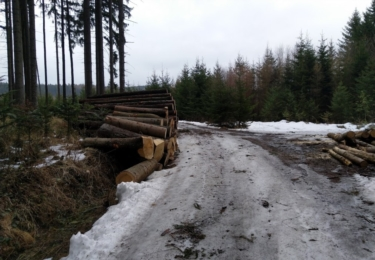 V podhůří Jeseníků ještě vládne zima, cesta je namrzlá