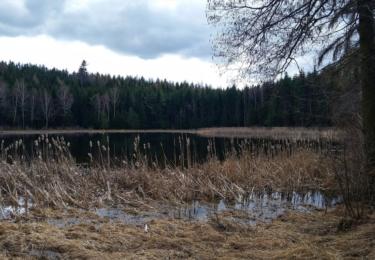 Jezero v Oldřichovci