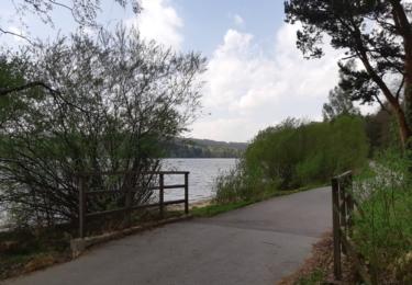 Cyklostezka vede kolem Lipna, které již nádherně kvete. Foto Facebook