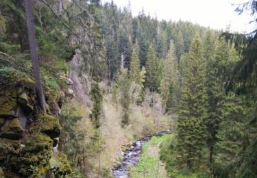 Výhled ze zříceniny Hus na údolí říčky Blanice