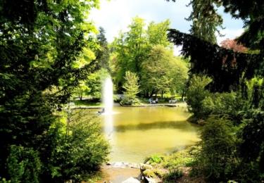 Park s jezírkem