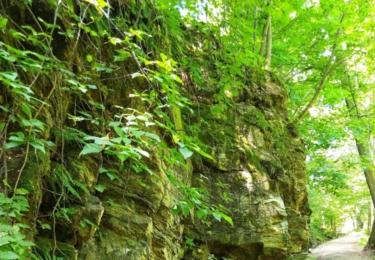 Cesta Jindřišským údolím - Hamerský potok
