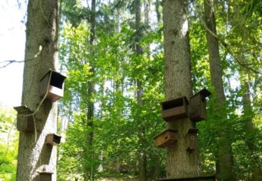Ptačí obdoba sídliště