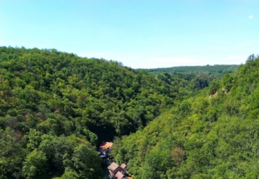 Údolí pod Karlštejnem