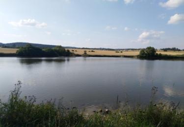 Rybník v Pičíně