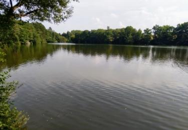 Velký rybník na Vrchlici