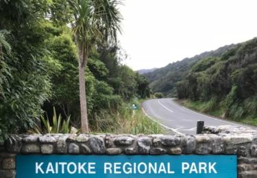 Národní park Kaitoke na Novém Zélandu, sem Peter Jackson umístil Elrondovu Roklinku, nyní to bude elfské království Rivendell