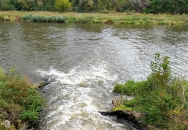 Mlýnský potok se vlévá do Labe
