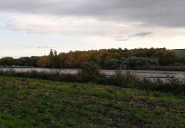 Vypuštěný rybník Podviňák
