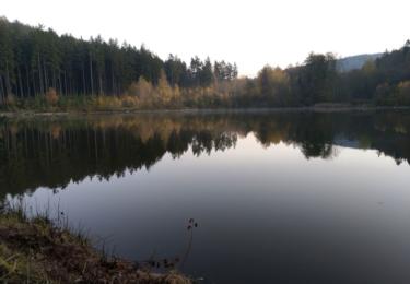 Rybník pod Moníncem