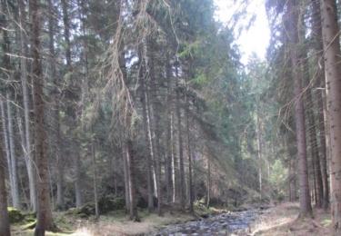 Hrejkovický potok