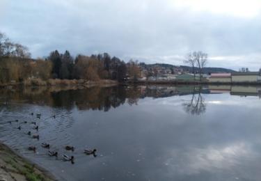 Lázeňský rybník