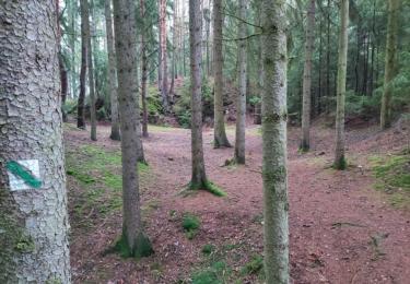 Kolem zlatodolu byla vytvořena Naučná stezka Roudný. Stezka má délku 4,5 km. Je navržena jako okružní cesta se dvěma krátkými odbočkami a návštěvník se zde seznámí jak se samotným dolem, tak i s okolní přírodou