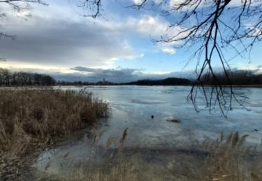 Putim od rybníku kolem kterého přicházel Švejk do Putimi
