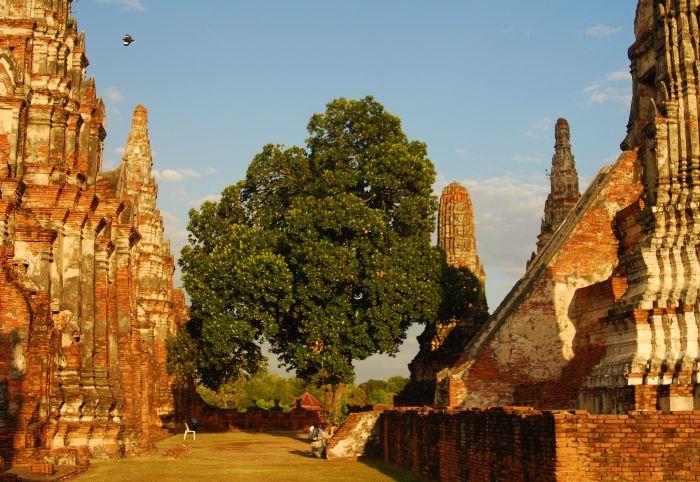 Ruiny chrámu Wat Chaiwatthanaram - detail