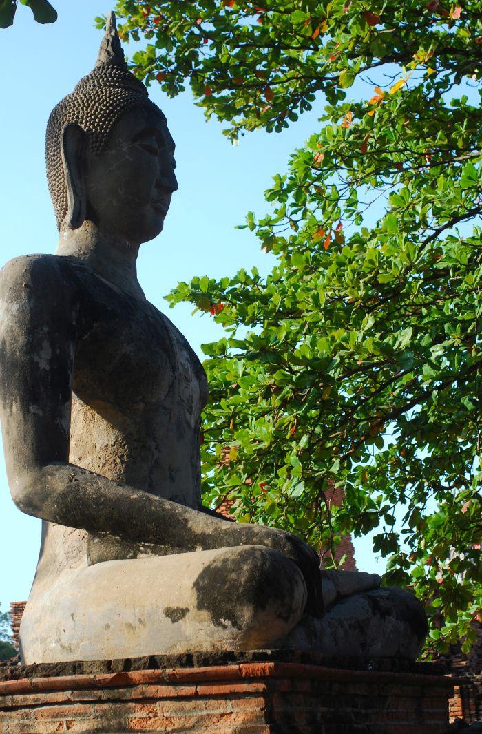 Další z mnoha soch Buddhy v  centrálním historickém parku