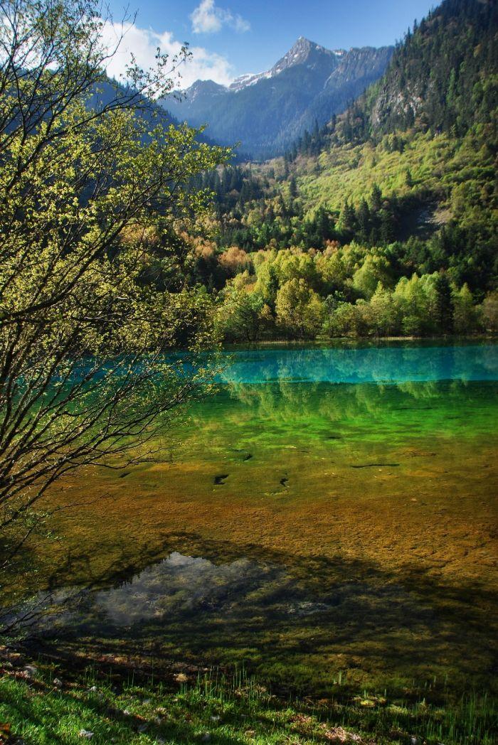 Jezero pěti květů