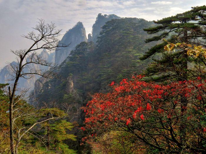 Podzim ve Žlutých horách