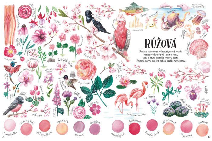 Barvy v přírodě